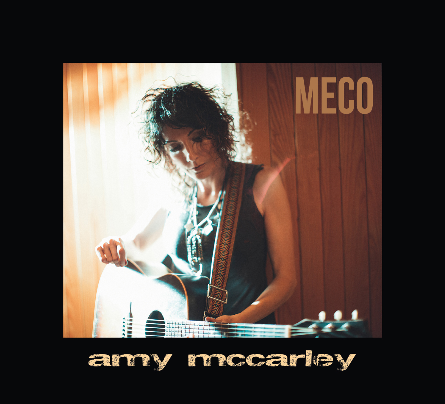 MECO_ALBUM_COVERART