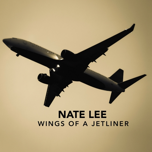 Nate Lee - Square Web Res Cover -Wings of a Jetliner